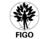 Launch website - 1st FIGO Africa Regional Congress of Gynecology and Obstetrics